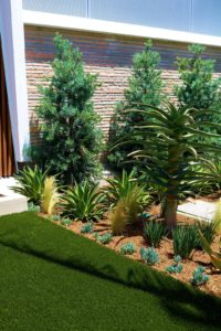 trees in artificial turf